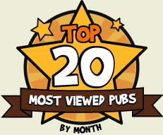 Top 20 Most Viewed Pubs - By Month