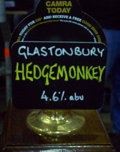 Glastonbury Hedgemonkey